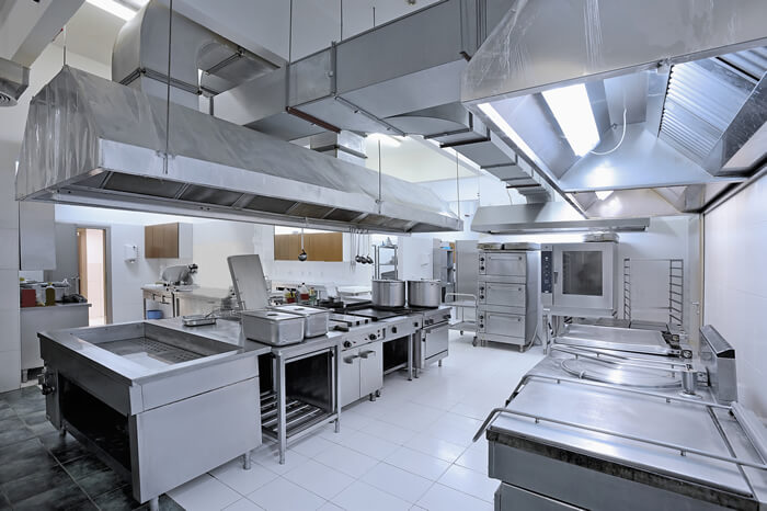 Commercial Kitchen Exe Estuary Pest Control